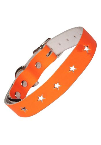 Accessories - CREATURE CLOTHES NEON ORANGE DOG COLLAR